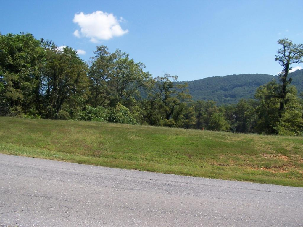 Residential - Single Family - Blue Ridge, VA (photo 4)