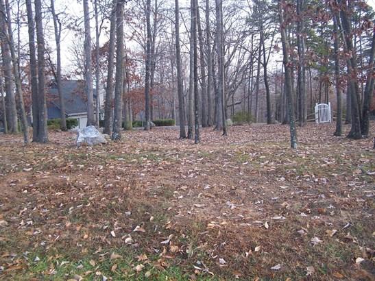 Developed - Blue Ridge, VA (photo 1)