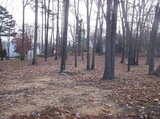 Developed - Blue Ridge, VA (photo 3)