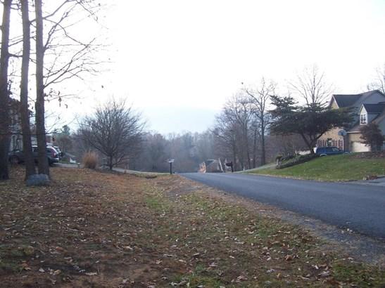 Developed - Blue Ridge, VA (photo 4)