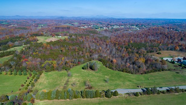 Commercial Land - Hardy, VA (photo 2)