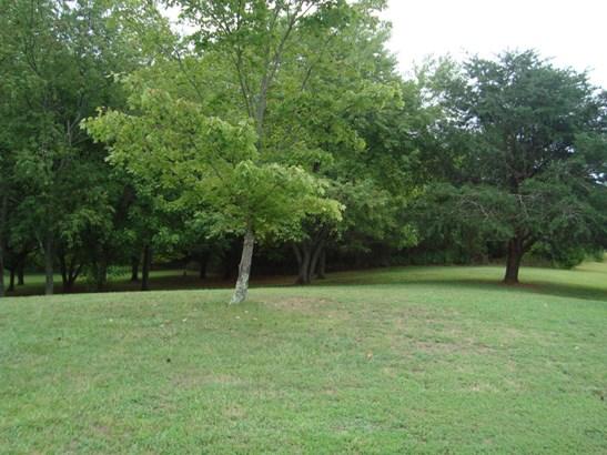 Single Family Detached, Ranch - Hardy, VA (photo 4)