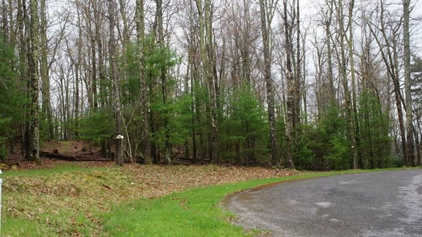 Residential - Single Family - Bent Mountain, VA (photo 4)