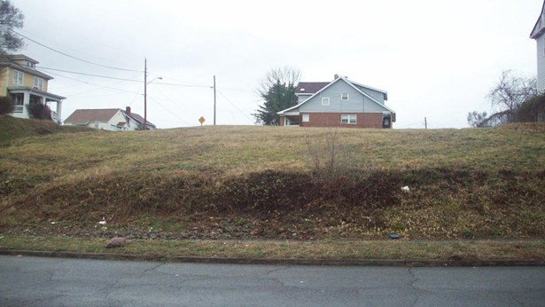 Residential - Single Family - Roanoke, VA (photo 4)