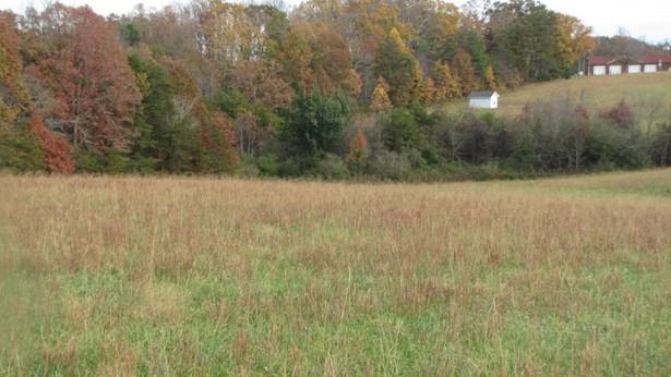 Commercial Land - Wirtz, VA (photo 1)