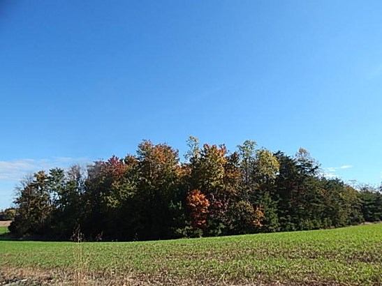 Commercial Land - Huddleston, VA (photo 2)