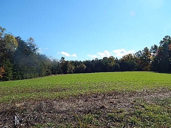 Commercial Land - Huddleston, VA (photo 4)