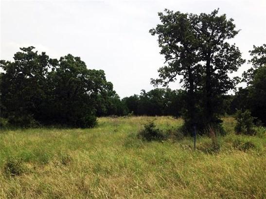 LND-Residential - Gordon, TX (photo 2)