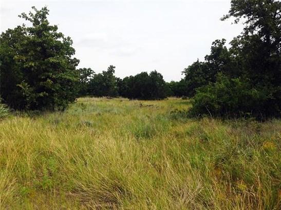 LND-Residential - Gordon, TX (photo 3)