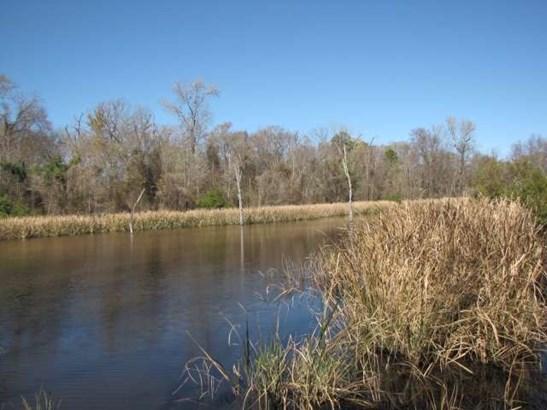 Rural Acreage - Bullard, TX