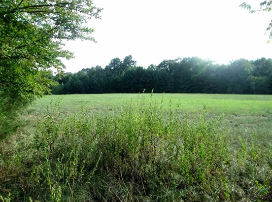 Rural Acreage - Tyler, TX