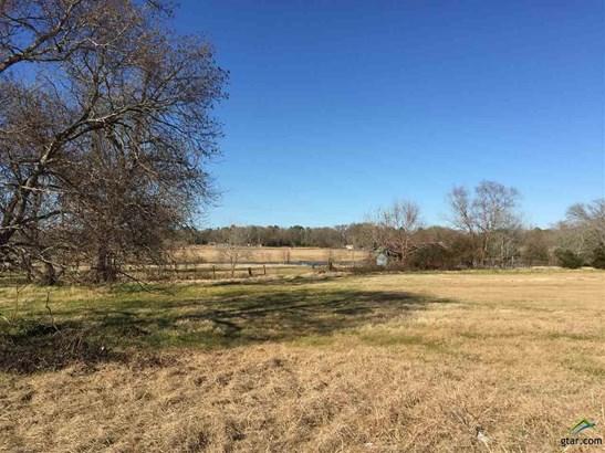 Rural Acreage - Whitehouse, TX (photo 1)