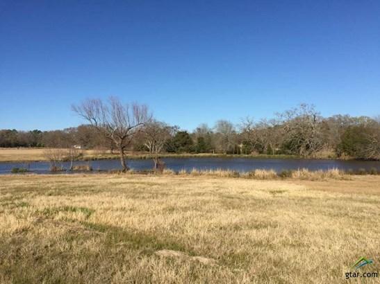 Rural Acreage - Whitehouse, TX (photo 2)