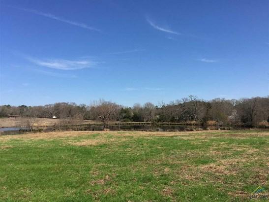 Rural Acreage - Whitehouse, TX (photo 4)