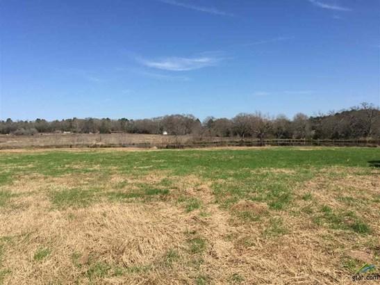 Rural Acreage - Whitehouse, TX (photo 5)