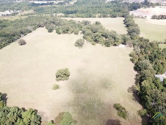 Rural Acreage - Tyler, TX (photo 1)