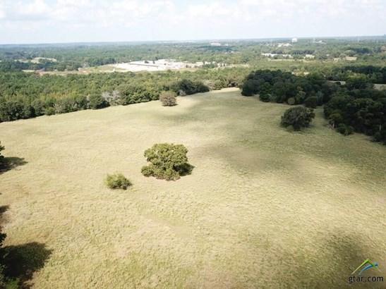 Rural Acreage - Tyler, TX (photo 3)