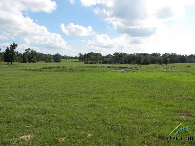 Rural Acreage - Flint, TX (photo 4)