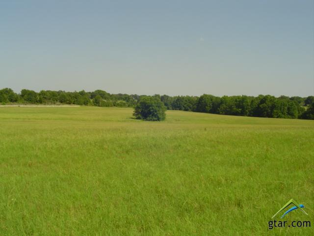 Rural Acreage - Bullard, TX (photo 4)