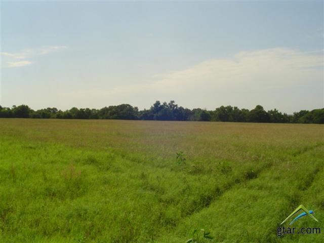 Rural Acreage - Bullard, TX (photo 5)