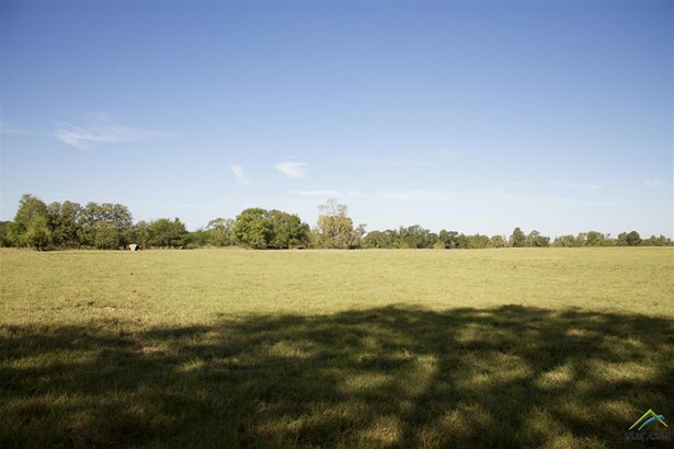 Rural Acreage - Henderson, TX (photo 2)