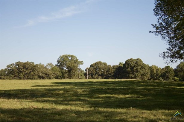Rural Acreage - Henderson, TX (photo 3)