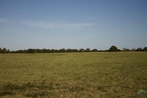Rural Acreage - Henderson, TX (photo 4)