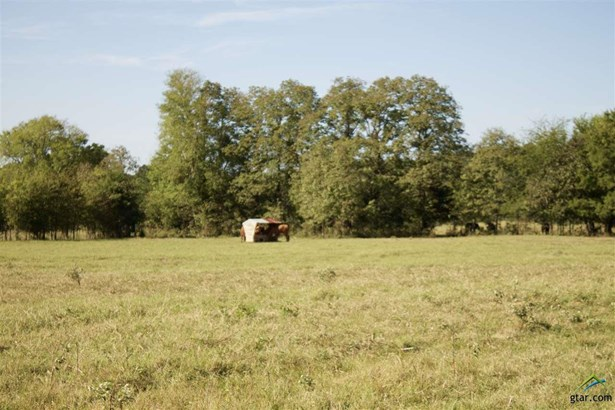 Rural Acreage - Henderson, TX (photo 5)