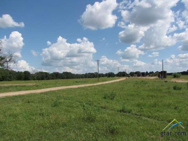 Rural Acreage - Van, TX (photo 1)