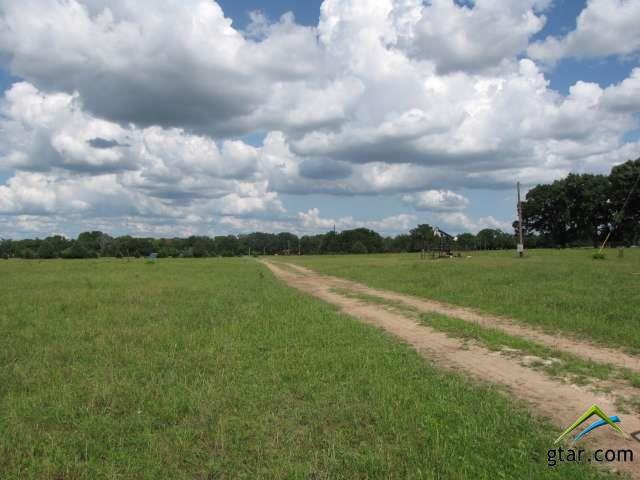 Rural Acreage - Van, TX (photo 2)