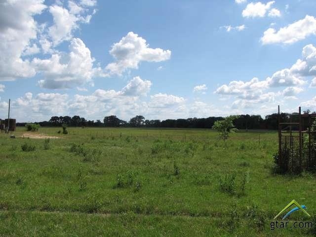 Rural Acreage - Van, TX (photo 5)