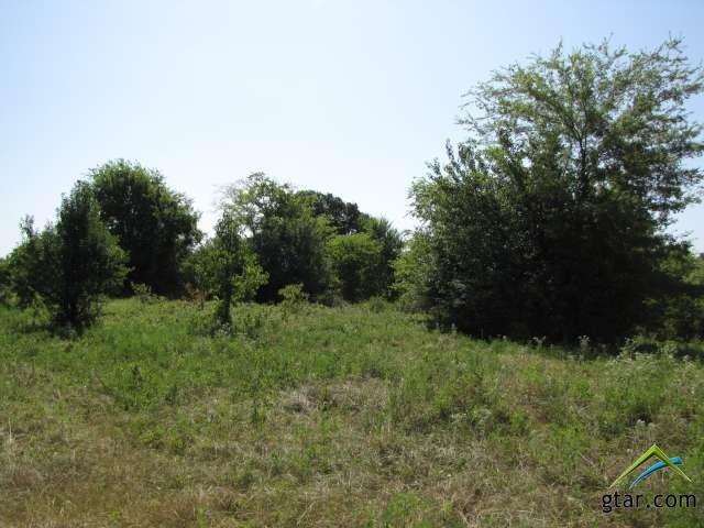 Rural Acreage - Bullard, TX (photo 1)