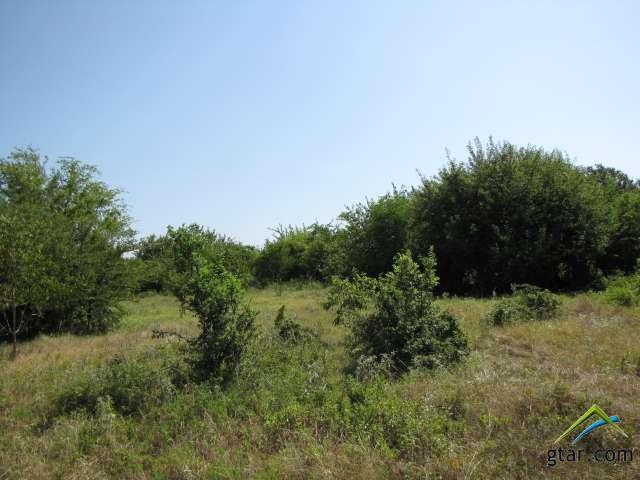 Rural Acreage - Bullard, TX (photo 3)