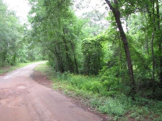 Rural Acreage - Flint, TX (photo 1)