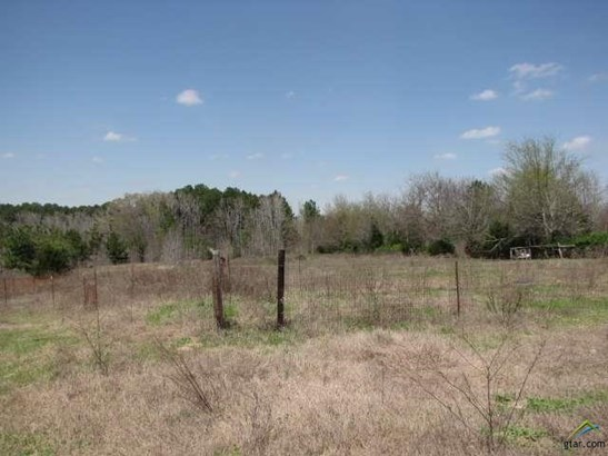 Rural Acreage - Arp, TX (photo 1)