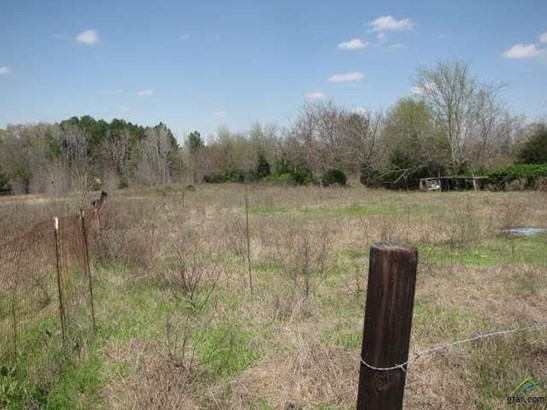 Rural Acreage - Arp, TX (photo 2)
