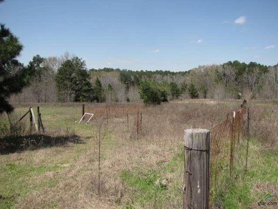 Rural Acreage - Arp, TX (photo 3)