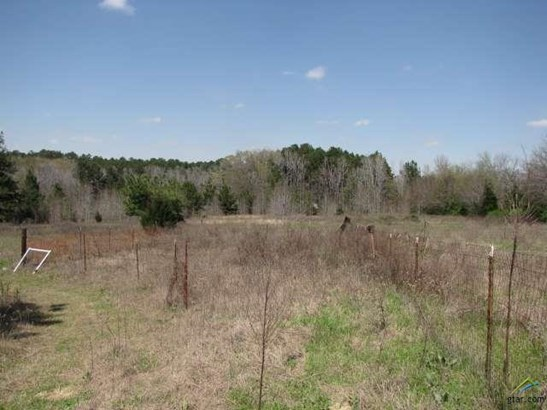 Rural Acreage - Arp, TX (photo 4)