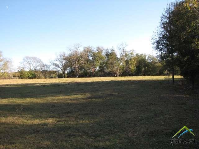 Rural Acreage - Flint, TX (photo 5)