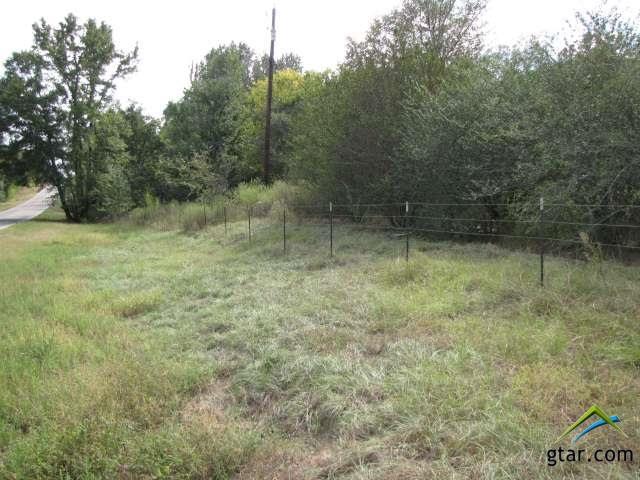 Rural Acreage - Ben Wheeler, TX (photo 2)