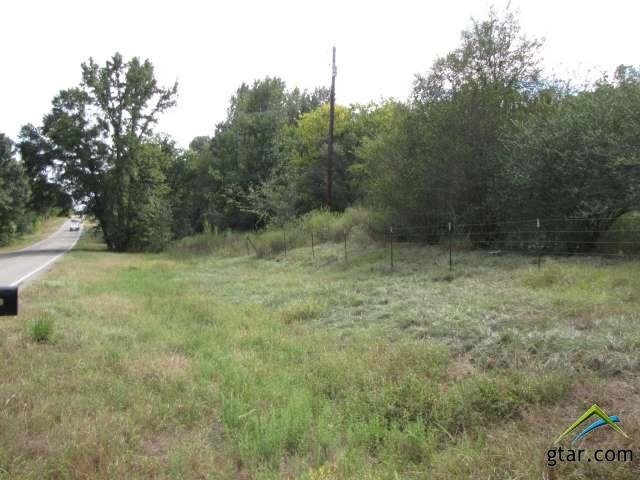 Rural Acreage - Ben Wheeler, TX (photo 3)