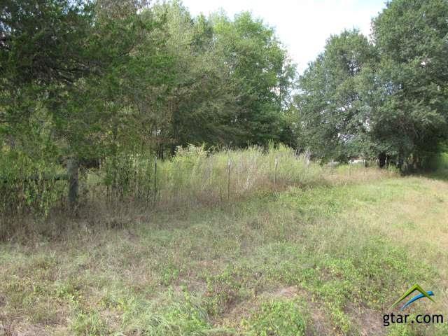 Rural Acreage - Ben Wheeler, TX (photo 4)
