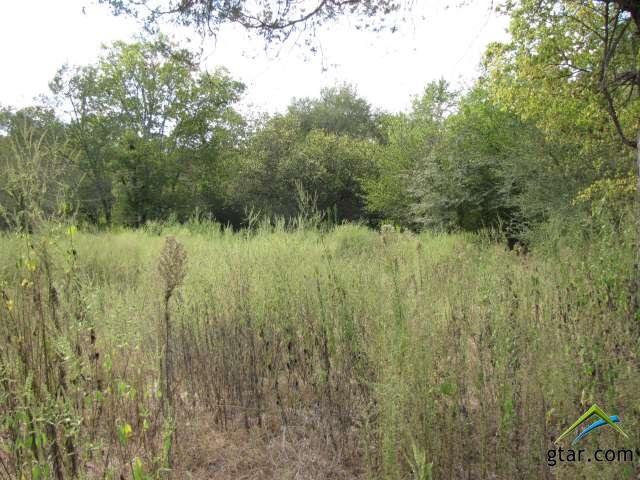 Rural Acreage - Ben Wheeler, TX (photo 5)