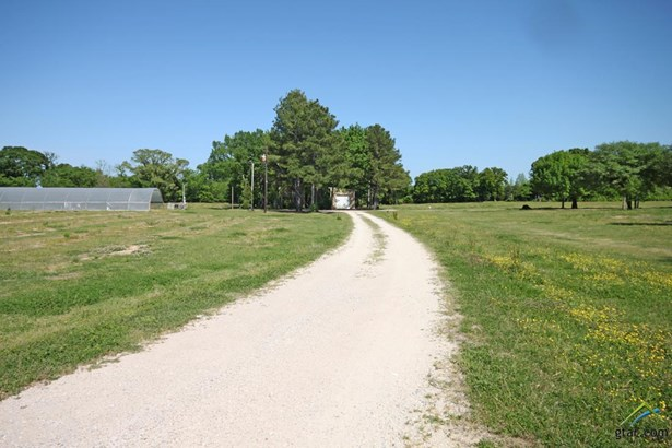 Single Family Detached - Grand Saline, TX (photo 3)