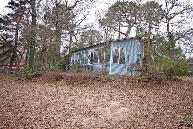 Single Family Detached - Whitehouse, TX (photo 3)