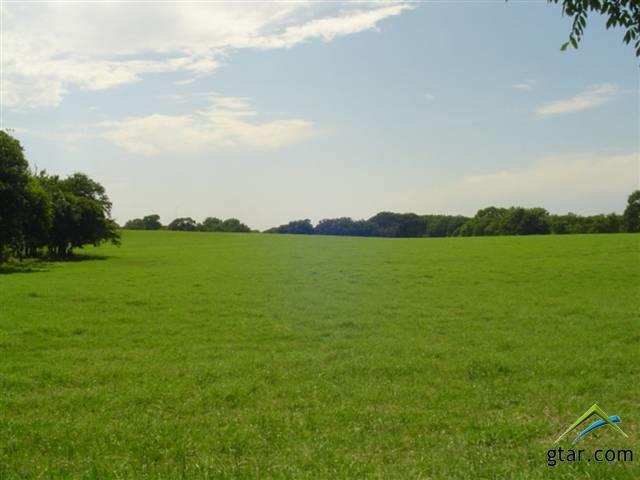 Rural Acreage - Tyler, TX (photo 2)