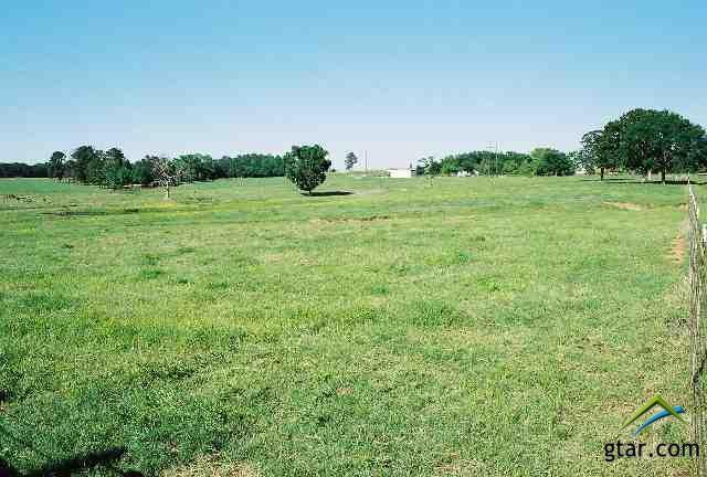 Rural Acreage - Tyler, TX (photo 4)