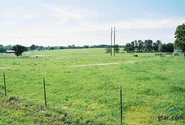 Rural Acreage - Tyler, TX (photo 5)