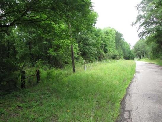 Rural Acreage - Flint, TX (photo 3)