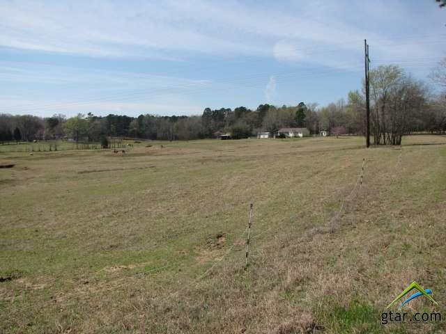 Single Family Detached, Traditional - Bullard, TX (photo 4)